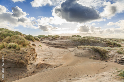 Fotografie, Obraz  Dune valleys with deep wind holes carved out by heavy storm with swaying marram