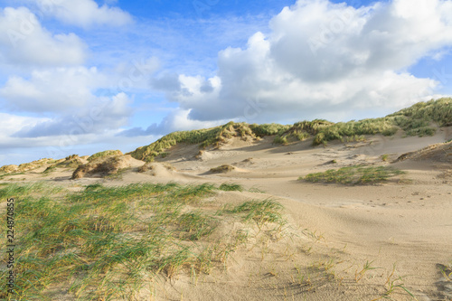 Fototapeta Dune valleys with deep wind holes carved out by heavy storm with swaying marram