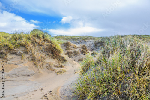 Valokuva  Dune valleys with deep wind holes carved out by heavy storm with swaying marram