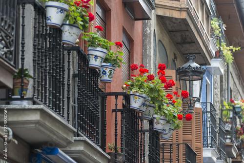 In de dag Chicago Balcony with flowers