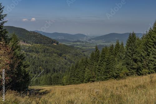 Keuken foto achterwand Verenigde Staten Forest in Jeseniky mountains in summer nice day