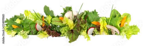 Obraz Salat - Panorama - fototapety do salonu
