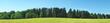 Waldrand im Sommer - Panorama