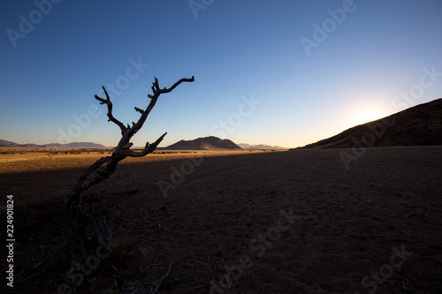 Foto op Canvas Zwart landscape of africa in the sunset