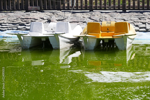 Fotografia  pedal boats in the park, pedal boats on the move in the park, pedal boats,