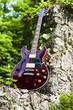 Gitarre Halbresonanz auf Stein