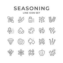 Set Line Icons Of Seasoning