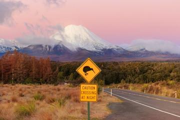 Kiwi road sign and volcano Mt. Ngauruhoe at sunset, Tongariro National Park, New Zealand