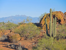View To Four Peaks From Founta...