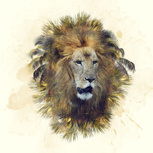Double Exposure Of Lion Head A...