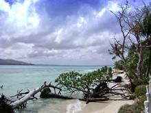 Managaha Island With Fallen Up...