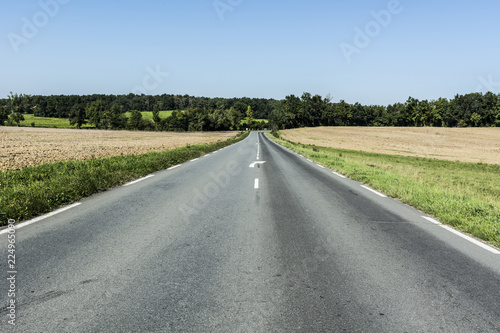 Tuinposter Pistache Asphalt road between fields