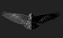Raven In Flight On Grey Background, Low Poly Triangular And Wireframe Vector Illustration EPS 8 Isolated. Polygonal Style Trendy Modern Logo Design. Suitable For Printing On A T-shirt.