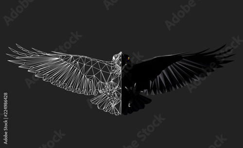 Photo Raven in flight on grey background, low poly triangular and wireframe vector illustration EPS 8 isolated