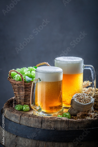 Tuinposter Bier / Cider Two gold pints of beer with foam, wheat and hops