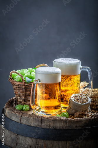 Tuinposter Bier / Cider Two cold light beers with foam, wheat and hops