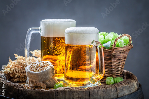 Tuinposter Bier / Cider Two cold light beers with foam, hops and wheat