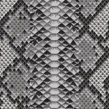 Snake Skin Colorful Animal Gray Seamless Pattern
