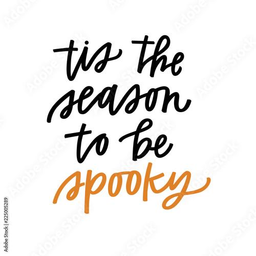 Fotografie, Obraz  Tis the season to be spooky