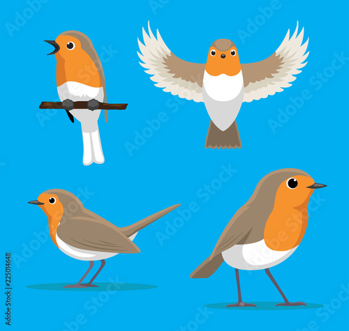 Cute European Robin Cartoon Vector Illustration Wall mural