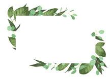 Vector Card Floral Design With Green Watercolor, Herbs, Leaves Eucalyptus, Lily Leaves, Botanical Green, Decorative Frame, Horizontal Rectangle. Cute Greeting, Postcard Template