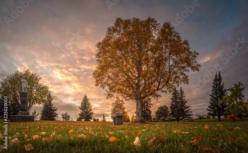Photo Angelus Memorial Park Sunset