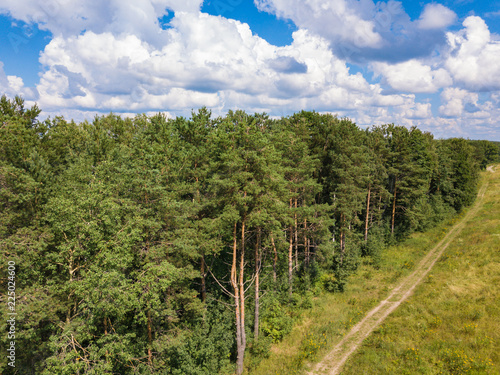 Spoed Foto op Canvas Natuur Aerial view to pine forest, dirt road and blue sky with white clouds. Summer russian landscape.