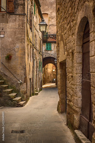 Garden Poster Narrow alley Narrow street of medieval ancient tuff city Pitigliano, travel Italy background