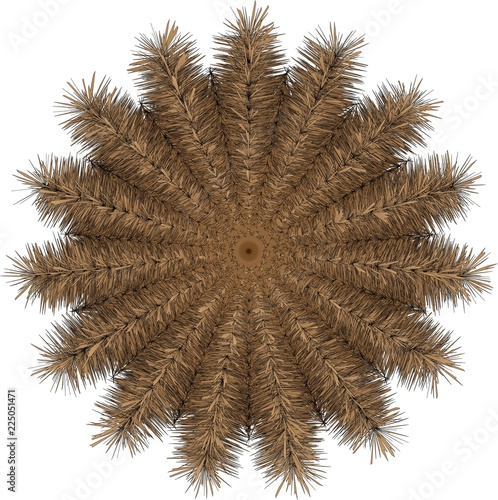Photo  fuzzy brown mandala