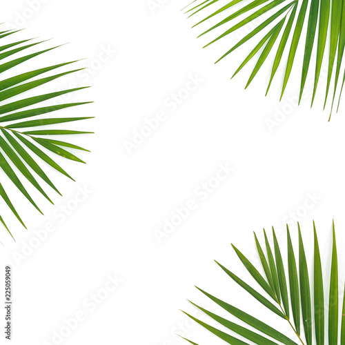 Frame exotic composition of palm leaves on white background. Flat lay, top view.