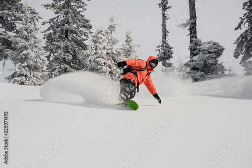 Snowboarder riding down the powder mountain hill among fir trees. Snowboarding in Georgia, Goderdzi