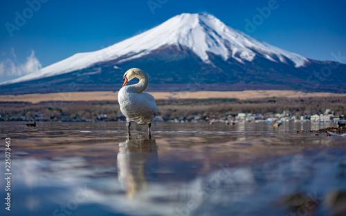 Piękny widok na jezioro Fuji
