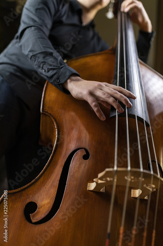 Fotografie, Tablou A person playing a double bass
