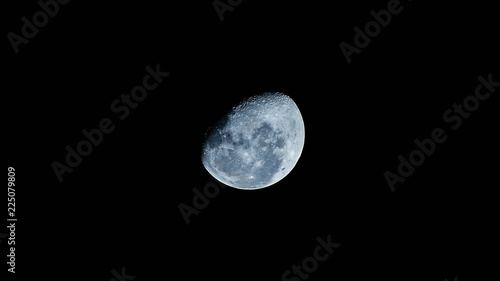 Obraz Luna en una noche de invierno. - fototapety do salonu