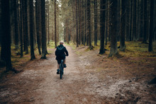 Back View Of Unrecognizable Man Riding Moutain Bike Along Deserted Path In Forest. Rear Shot Of Male Cycling In Woods On Peaceful Morning With Nobody Around. People, Nature And Sports Concept