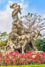 Five Goats Statue In Yuexiu Pa...