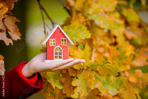 female hand holding house toy near oak branch in autumn season park