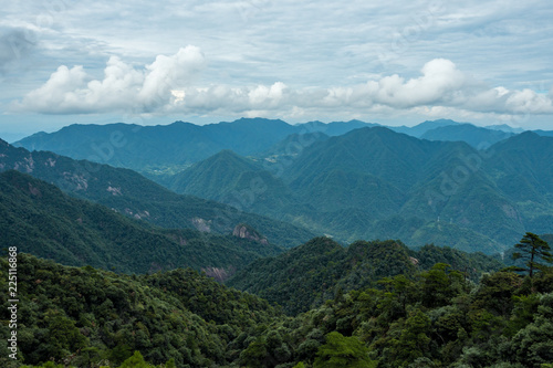 forest covered valley floor covered in blue haze at mount sanqing