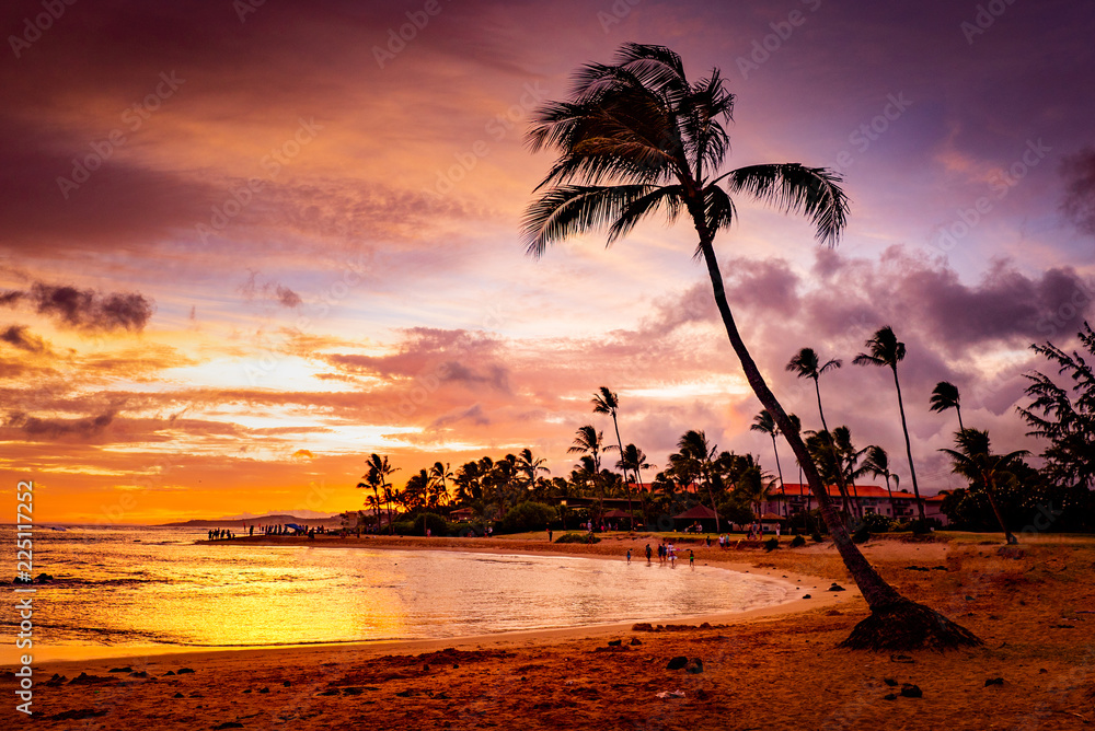 Fototapeta 夕方の海,  The Sunset in Hawaii