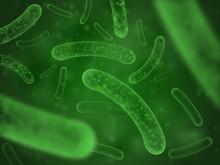 Bacteria Biological Concept. Micro Probiotic Lactobacillus Green Scientific Abstract Background