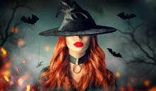 Halloween. Sexy Witch Portrait...