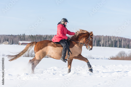 Fotografía  Woman on a galloping horse during winter.