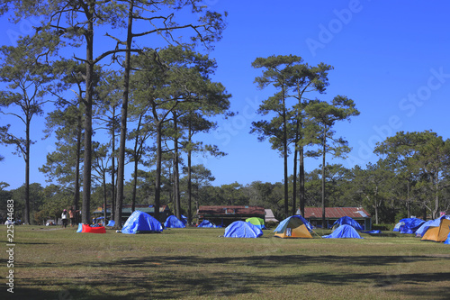 Canvas Prints Camping View of the tent in the forest.