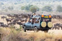 Photographers Shooting Wildebeest In The Masai Mara