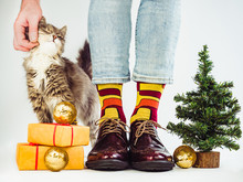 Men's Legs, Funny Socks, Stylish Footwear, Gray, Fluffy Kitten And Christmas Tree. White Background, Isolated, Close-up. Preparing For The Holidays
