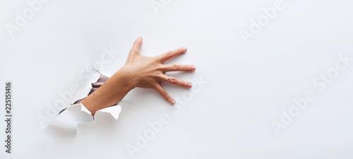 Obraz na plátně The hand reaches to something