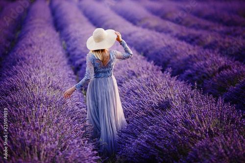 Fototapeta Woman in lavender flowers field at sunset in purple dress. France, Provence. obraz