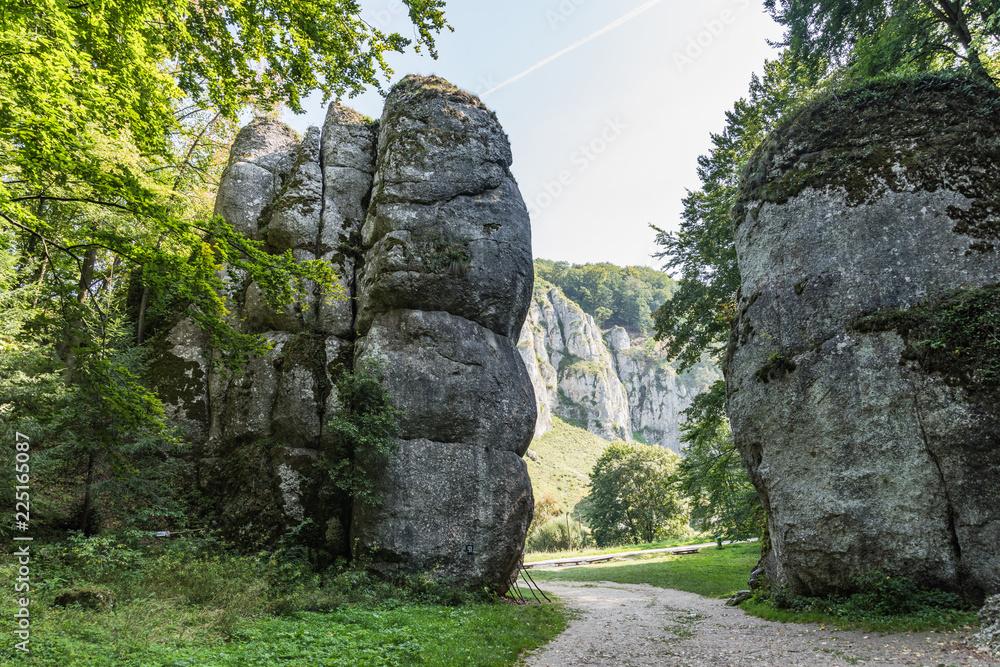 Fototapeta Cracow Gate rock formation in Ojcow National Park, Krakow,Poland