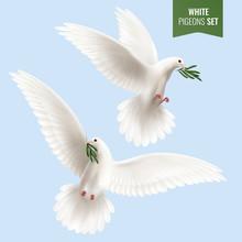White Dove Realistic Set