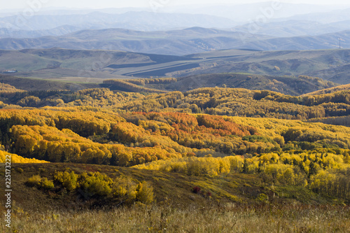 Autumn. Natural landscape. Bright colors of the autumn forest on the rocky slopes of the mountains. The Altai Mountains. Eastern Kazakhstan.